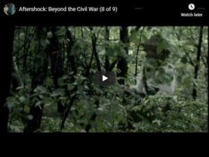 [A&E / IMDB] Aftershock: Beyond the Civil War (8 of 9)